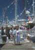 Newport Beach Boat and Yacht Shows